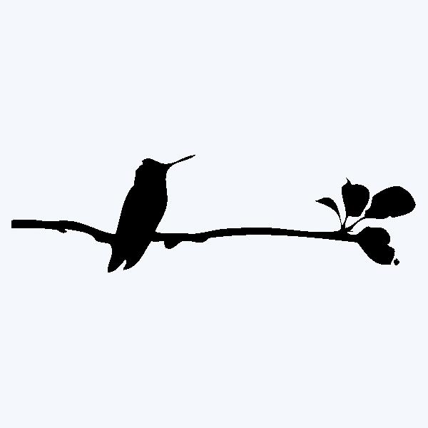 BIRDYONTHEBRANCH