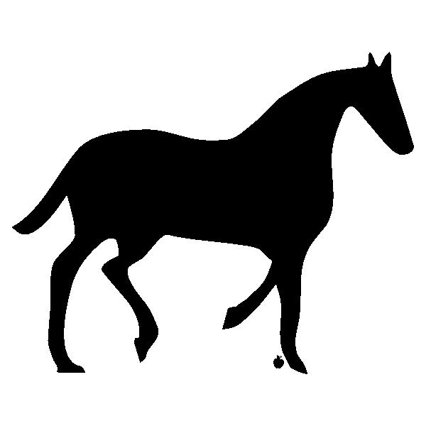 HORSEEAN