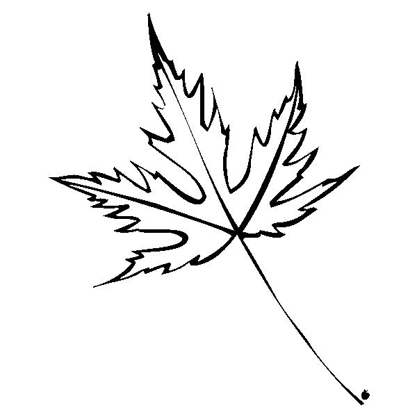 ICHYLEAVE