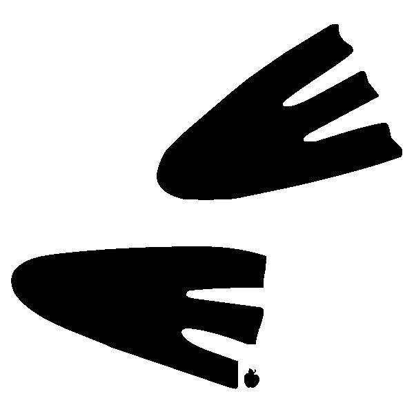 SEAFEET