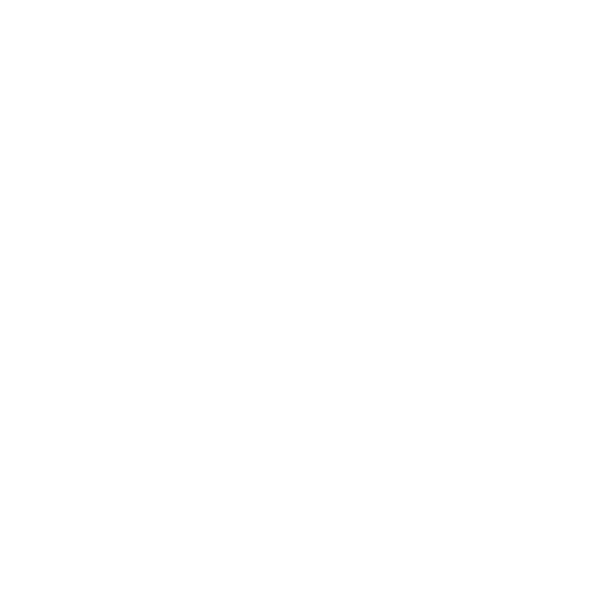 ZEBRASKIN