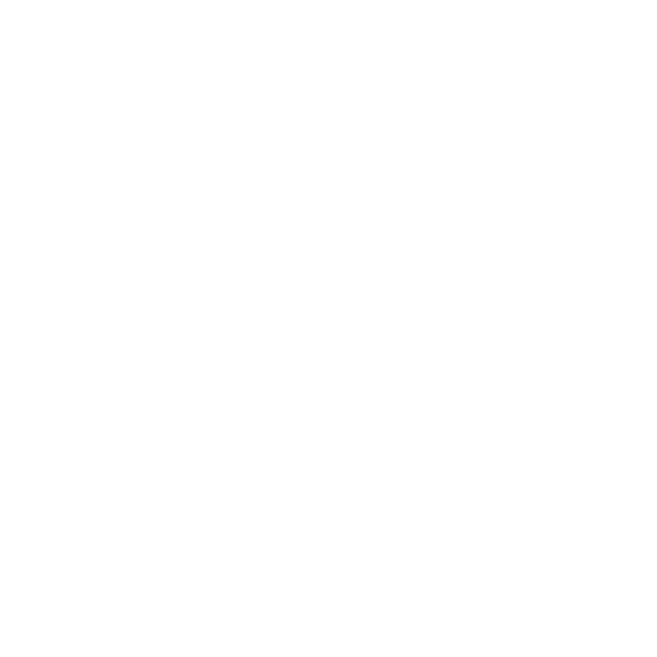 little-ladybird